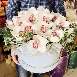 15 крупных белых орхидей в коробке R645